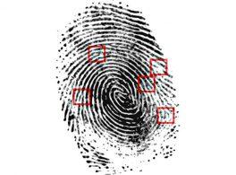 CSI scena crimine